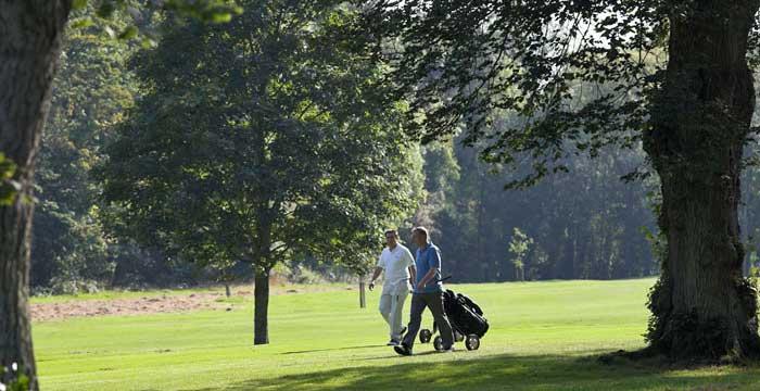 section-golfdays